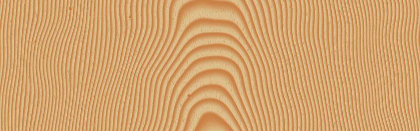 Les caractéristiques du bois